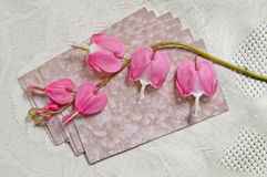 Broken Heart. Bleeding Heart flowers laying on antique calling cards.  WITH CLIPPING PATH Stock Images
