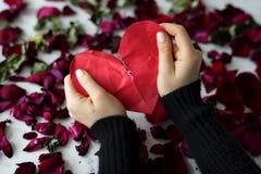 Broken Heart Sadness Frustration Flower Leafs Stock Image