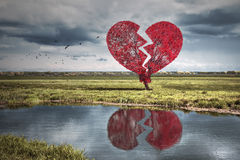 Broken heart tree. Painted tree in the form of a broken heart Royalty Free Stock Photo