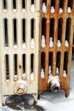 Broken Heat System Royalty Free Stock Photo