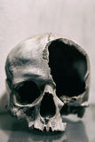 Broken human skull close up. Toned image royalty free stock photography
