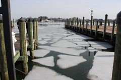 Broken Ice in Annapolis Stock Image