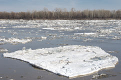 Broken ice floating on the river in spring stock photo