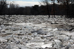 Broken ice flooded river Royalty Free Stock Image