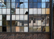 Broken Industrial Windows Stock Photo