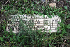 Broken keyboard. On grass Royalty Free Stock Image