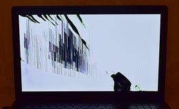 Broken laptop LCD screen. Functioning broken LCD screen of a laptop royalty free stock photos