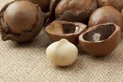 Broken macadamia  nuts Royalty Free Stock Photo