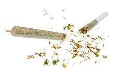 Broken marijuana joint. Isolated on white background Royalty Free Stock Image