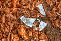 Broken mirror. The broken mirror - a bad sign. Splinters in mirrors in autumn leaves Royalty Free Stock Image