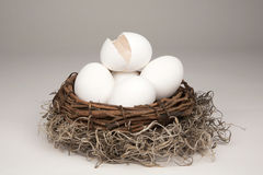 Broken Nest Egg Generic stock photos