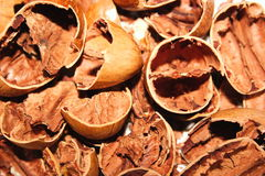 Broken nut shells Stock Photos