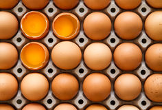 Broken organic eggs in cage. Stock Images