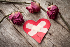 Broken paper heart and old roses Stock Image