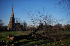 Broken. In a park, a broken tree lays in front of a cathedral stock photo