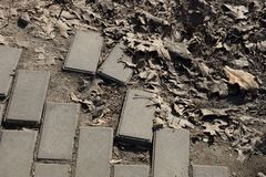 Broken pavement of gray stone bricks in the ground and dry leaves. Outside stock photography