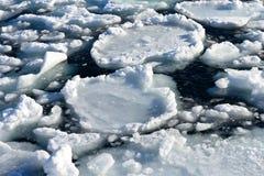 Broken piece of ice in sea water Stock Image