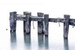 Broken pier standing in calm lake water, weeds and plants growin Stock Images
