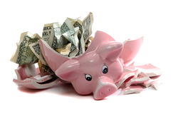 Broken piggybank with dollar notes Royalty Free Stock Image