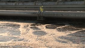 Broken pipeline and dirty sewage water flowing. Ecological catastrophe. Static shot stock video footage