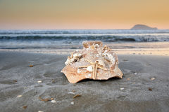 Broken pot on a beach Stock Photo