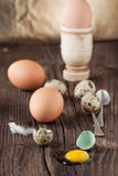 Broken quail egg with the leaked yolk and chicken eggs Stock Image