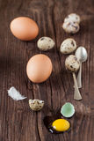 Broken quail egg with the leaked yolk and chicken eggs Stock Images