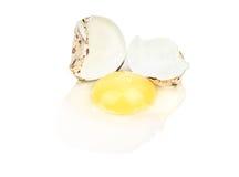 Broken quail egg. Broken raw quail egg on white background Royalty Free Stock Images