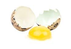 Broken quail egg. Broken raw quail egg on white background Stock Photos