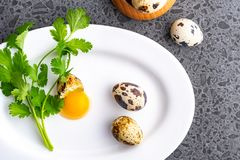 Broken quail eggs with parsley on the white table. Eco product royalty free stock images