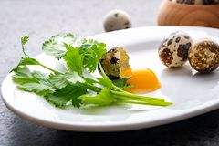 Broken quail eggs with parsley on the white table. Eco product stock photos