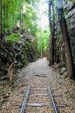 Broken railway. In the forest stock image