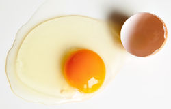 Broken raw egg Stock Image