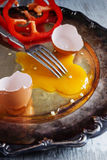 Broken raw egg Royalty Free Stock Photography