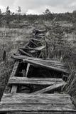 Broken road in a marsh in Estonia Royalty Free Stock Photography