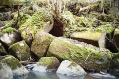 Broken rock on the bank of the stream. Natural stones stock photos