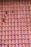 Broken Roof Tiles. Broken clay tiles on a red roof Royalty Free Stock Photos