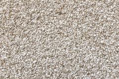 Broken sea shell dash in cement render on wall. Broken shell dash in cement render on external wall stock image