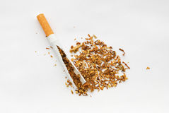 broken sigarette Royaltyfri Fotografi