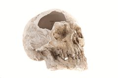 Broken skull Royalty Free Stock Photography