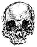 Broken Skull Drawing line work vector Stock Images