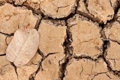 Broken soil in dry season Stock Image