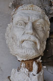 Broken statue head ancient god Stock Photos
