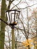 Broken street light Royalty Free Stock Images