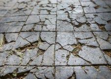 Broken Tiled Floor Stock Photography