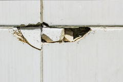 Broken tiles. Stock Photography