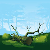 Broken tree with a curved crown. A high quality illustration of colorful tree with a curved crown Stock Images