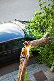 Broken tree over a car, after a wind storm. Disaster Royalty Free Stock Photography
