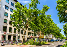 Broken trees in the city center of Dusseldorf. Royalty Free Stock Photography