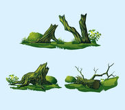 Broken trees, stumps. A high quality broken trees, stumps. Isolated set of four broken trees, stumps Royalty Free Stock Image